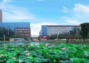 龙泉经开区精装办公室出租面积可分图片6