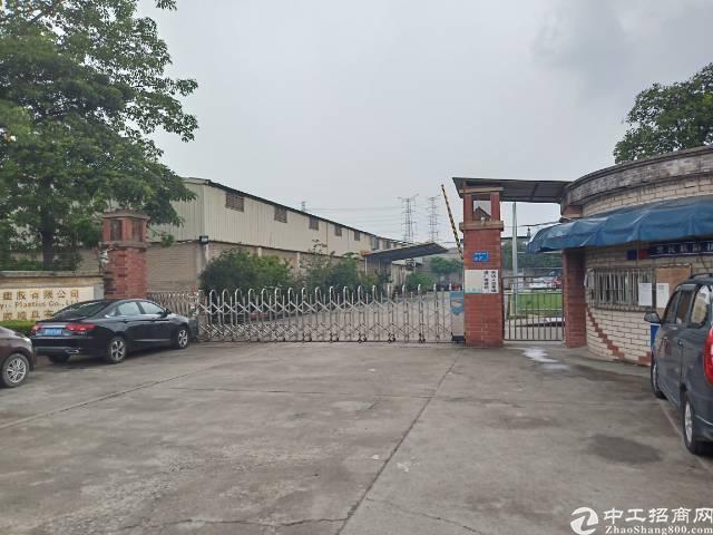 东莞最笋单一层厂房出售