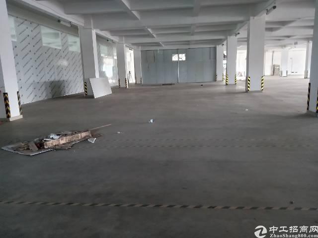 谢岗镇带喷漆证厂房28元/平出租12000平