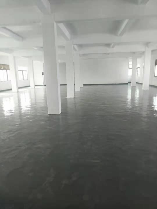 大岭山镇新出标准二楼厂房600平方现成装修低至10元