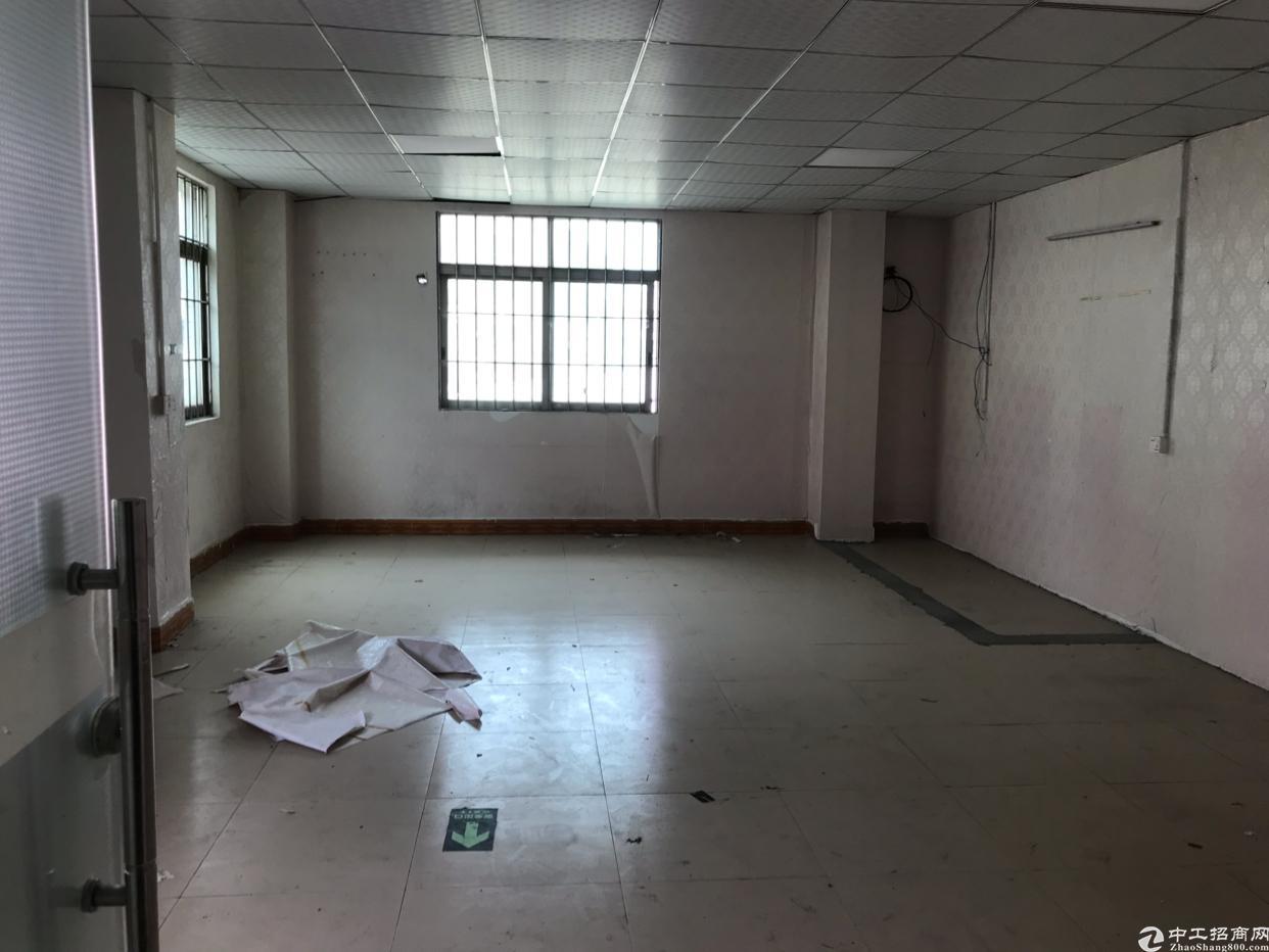 寮步新出一楼带现成办公室