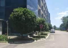 天府新区2600平研发中心办公楼出租价格便宜精装修