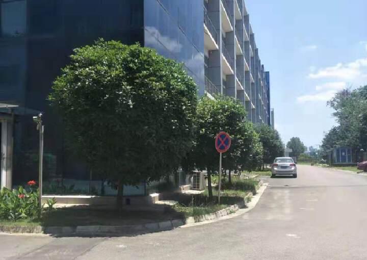 天府新区2600平研发中心办公楼出租价格便宜精装修图片1