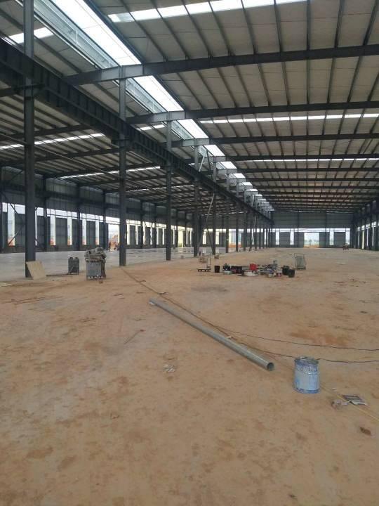 1000到6000平全新单层钢结构厂房出售