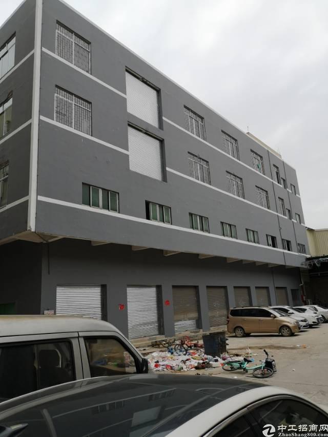 高埗镇独栋厂房4000平方岀租!