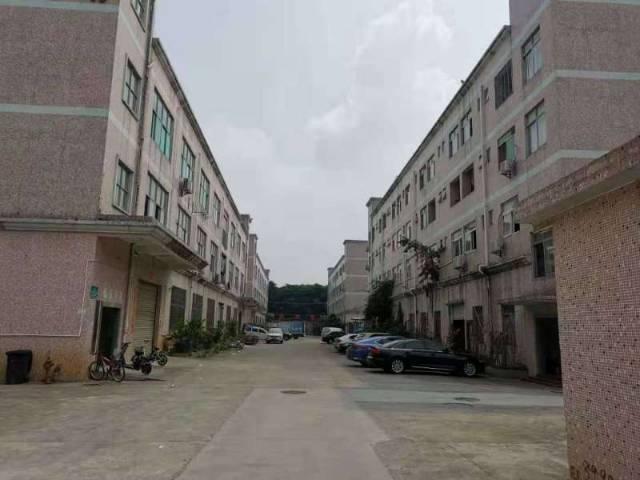 210东莞新出独院厂房