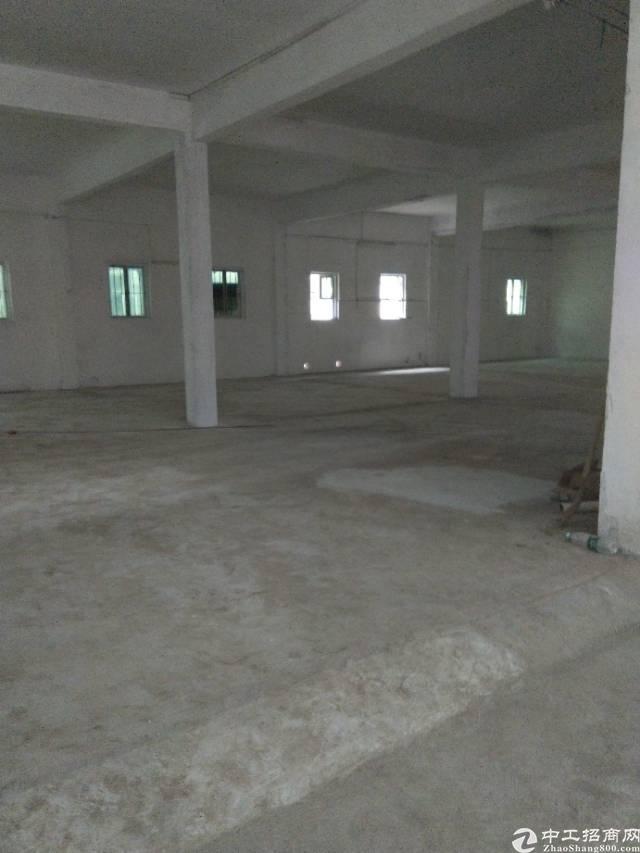 大石工业园区新空出独栋标准厂房820平米,有环评,可办证-图2