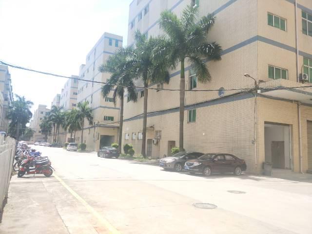 福永红本独院厂房五栋厂房两栋宿舍实际面积五万平出租,可包租
