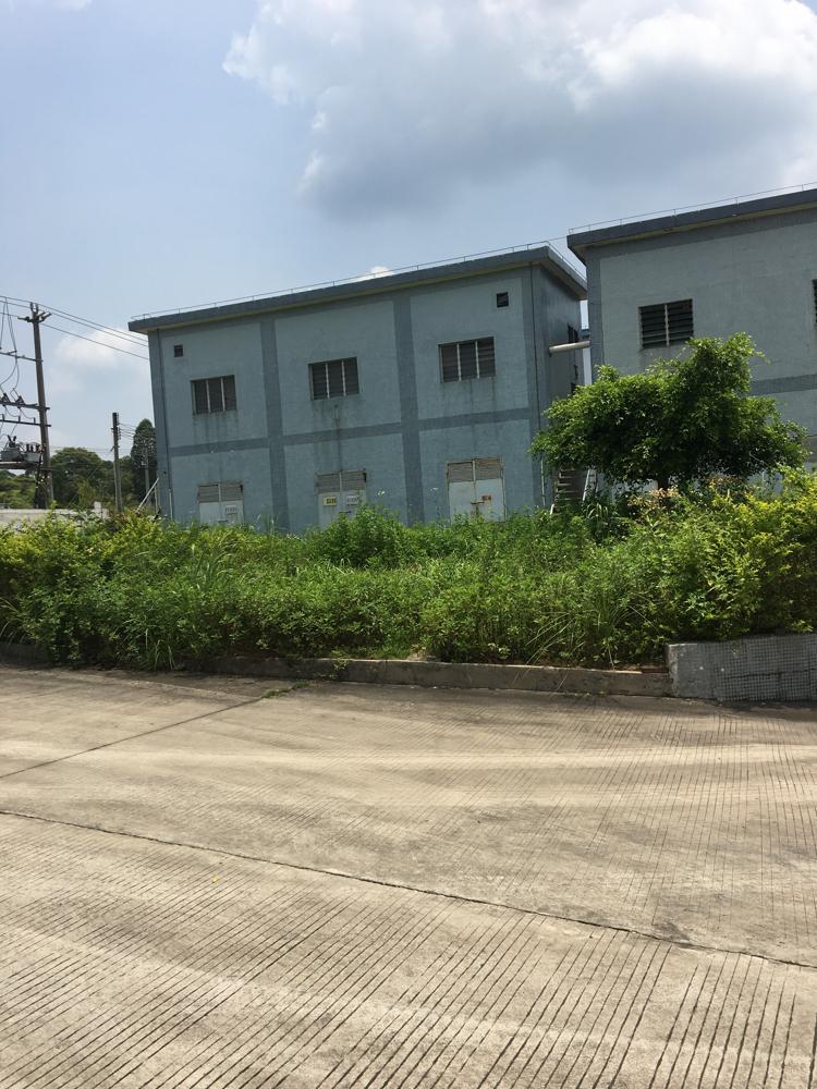 惠州博罗新出原房东占地38000平滴水12钢结构12000平-图4