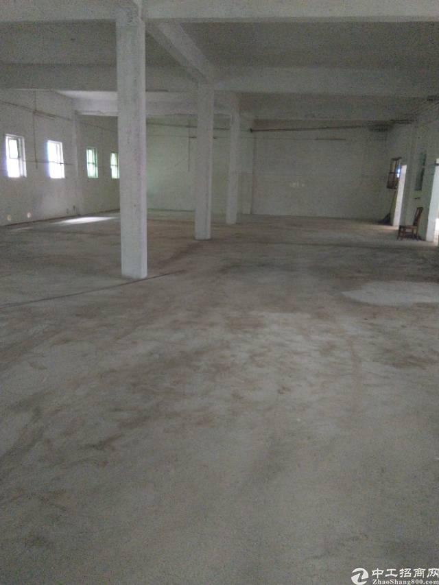 大石工业园区新空出独栋标准厂房820平米,有环评,可办证-图4