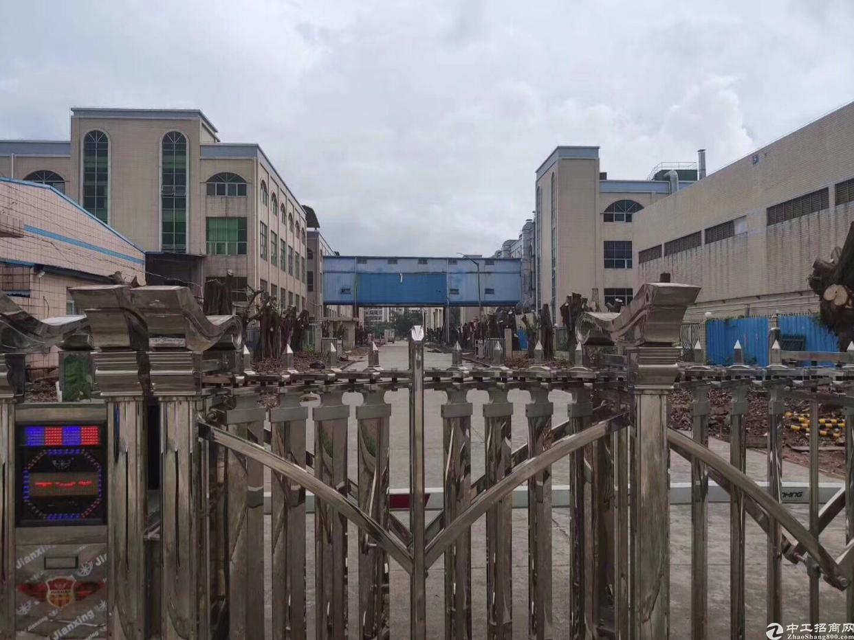 樟木头镇新出厂房,滴水9米,