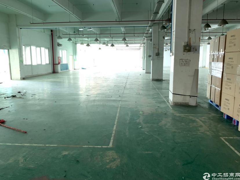 坪山石井大马路边新出独院厂房3楼1300平方出租