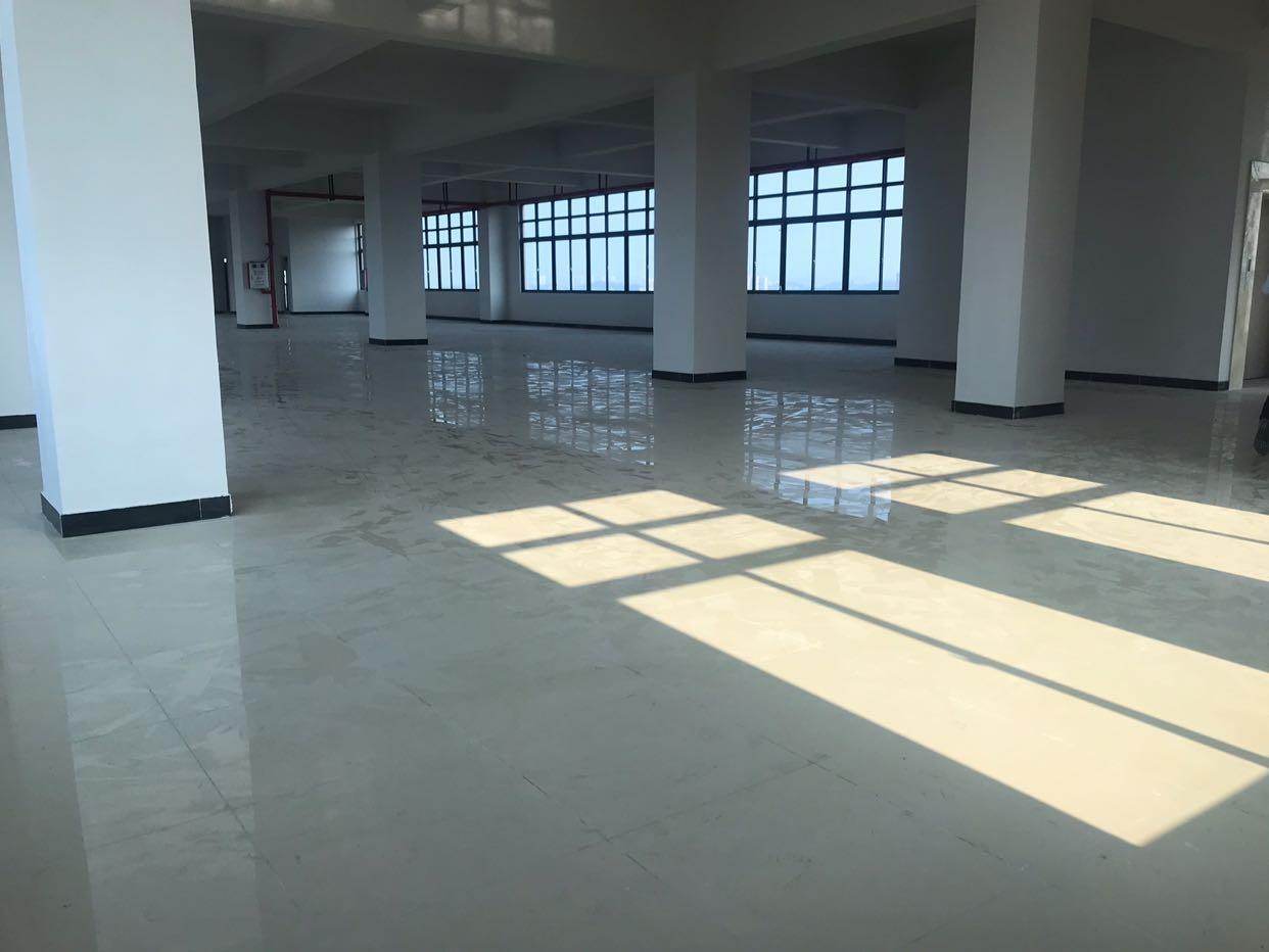 大朗新建厂房招租靠近镇中心
