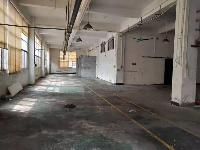 大朗原房东带现成办公室标准厂房900平方一楼出租