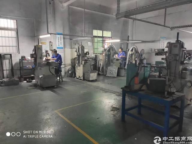 茶山镇京山电子厂一楼 面积:350平方