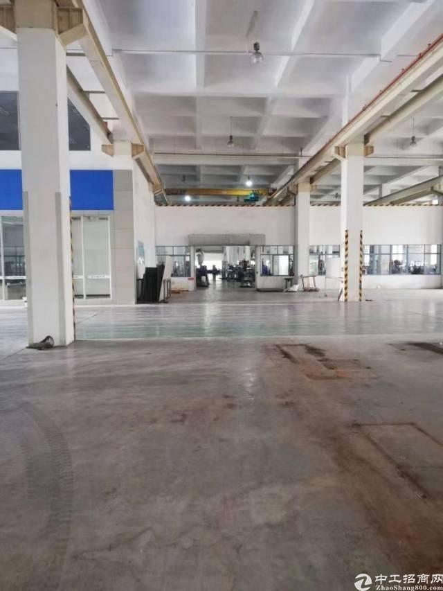 坪山原房东标准单一层10米带行车1350平出租