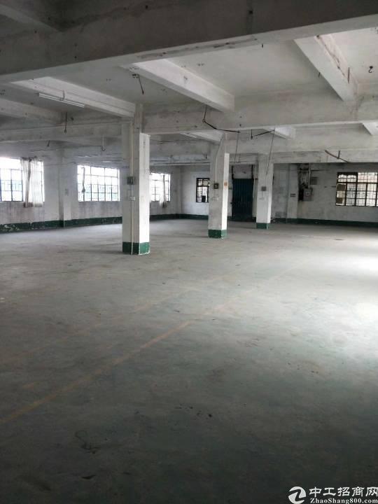 樟木头镇裕丰管理区有标准厂房一楼1000平方左右出租-图3