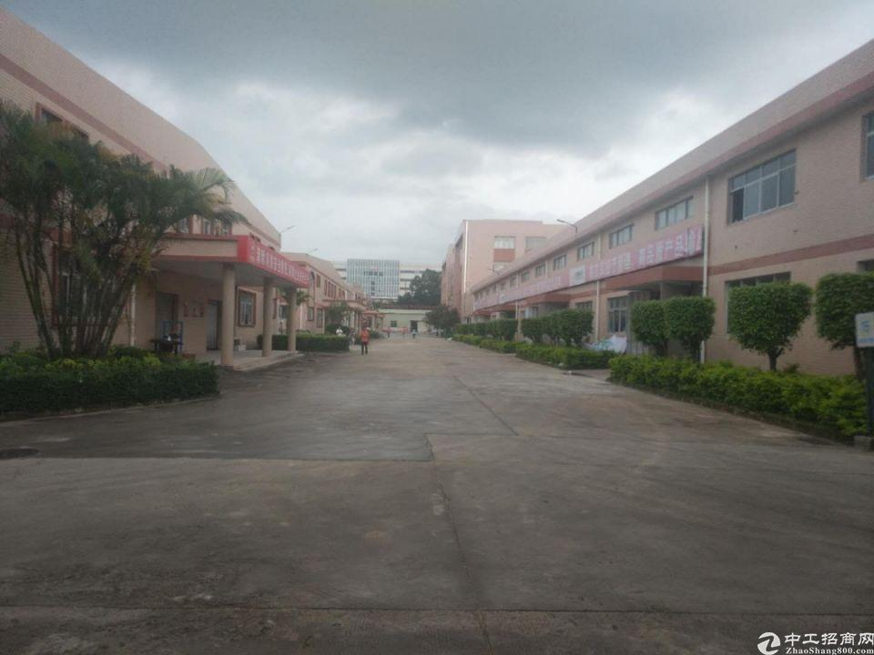 惠阳秋长新塘村带红本标准钢结构厂房