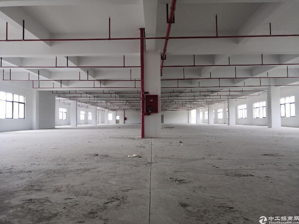 惠东县白花镇1楼800平标准厂房出租6.2米可办环评