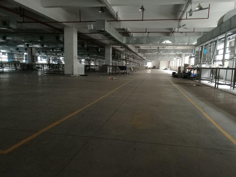 原房东仲恺高新区花园式厂房标准一楼3600平方米招租可分租-图8