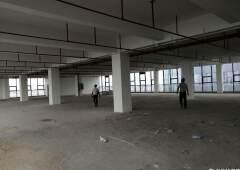 坪地新出甲级写字楼12000平方合同可签10年