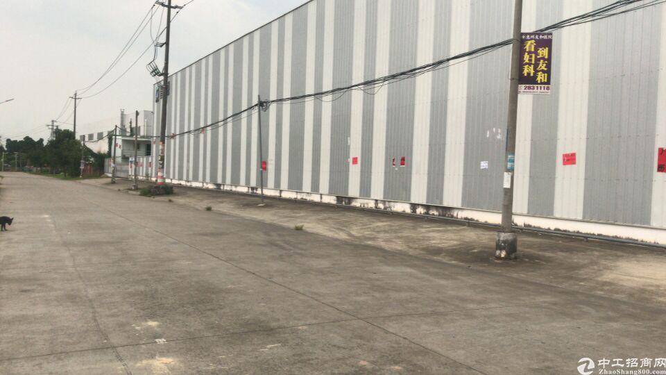 惠州市沥林镇滴水10厂房招租-图2