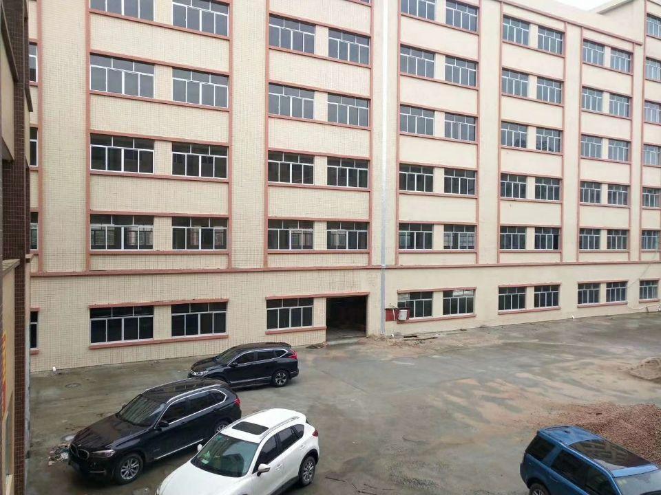 园洲原房东独院标准厂房