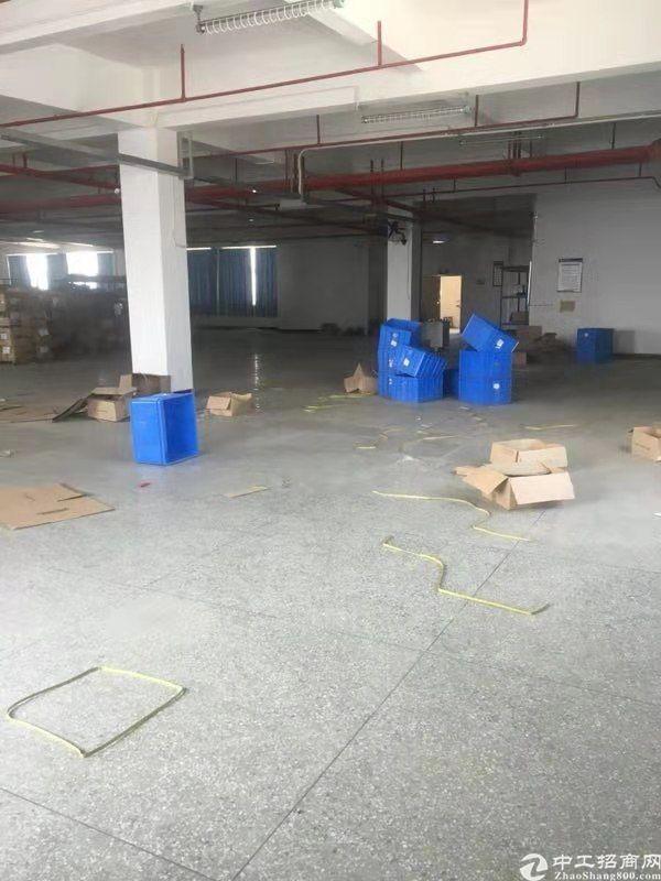 博罗县罗阳原房东标准厂房1200