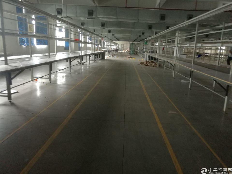 原房东仲恺高新区花园式厂房标准一楼3600平方米招租可分租-图3