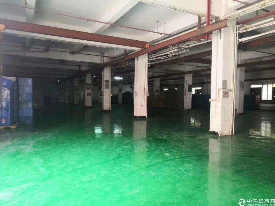 沥林镇新出原房东一楼现成行车厂房1200平米招租