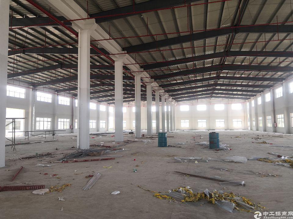 惠东县白花镇全新5000平钢结构厂房出租超大空地-图2