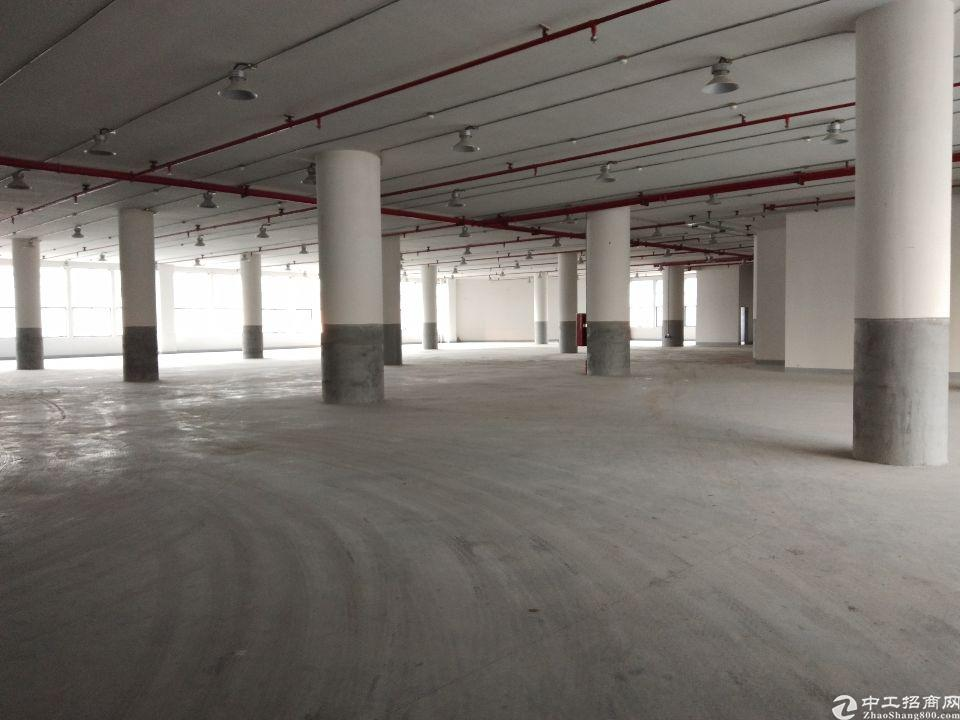 从化开发区新出标准厂房一楼5000,可办环评,可分租,原房东