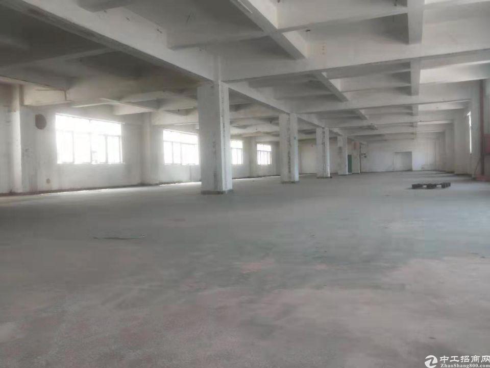 西乡鹤洲地铁口附近厂房出租