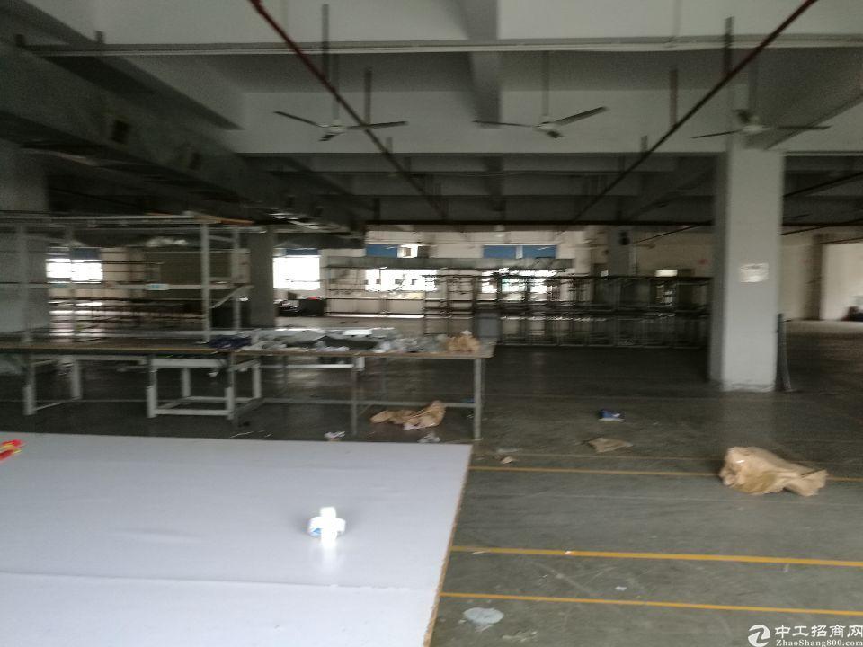 原房东仲恺高新区花园式厂房标准一楼3600平方米招租可分租-图6