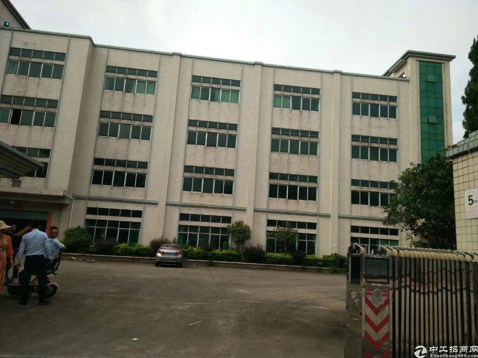 平湖凤凰大道主干道工业园区楼上2000平方米厂房仓库出租
