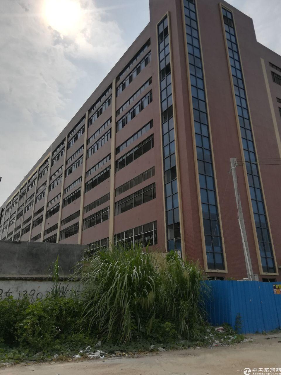 惠东县白花镇标准的工业