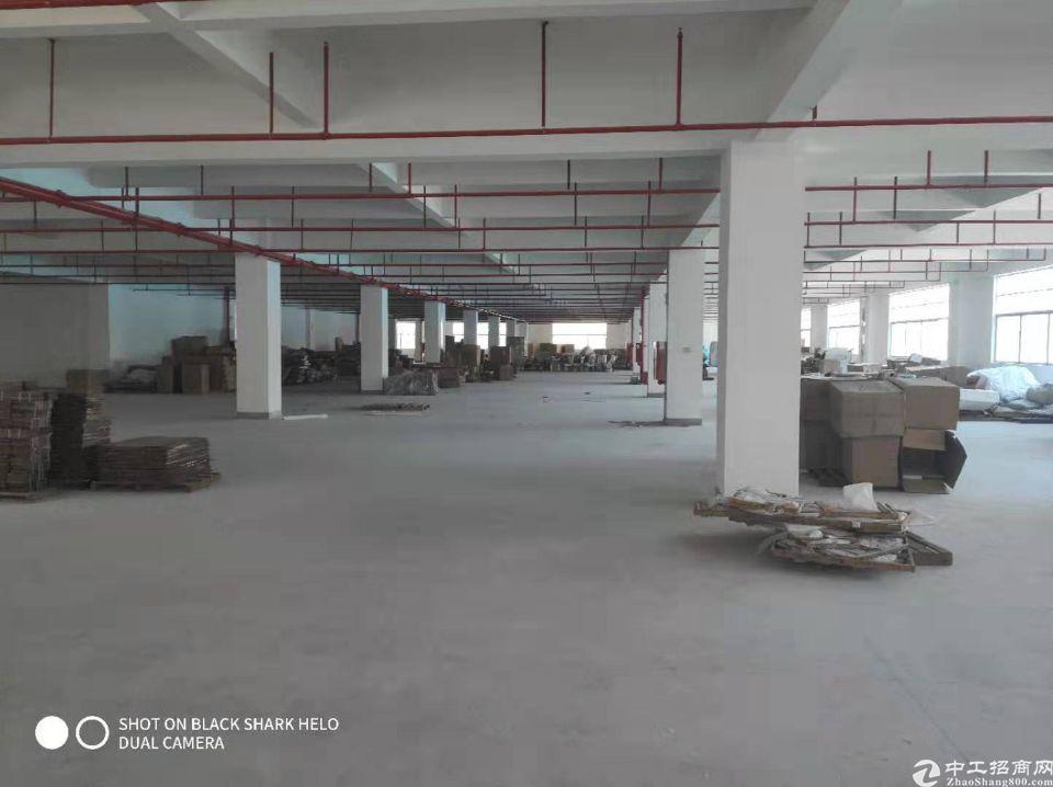一楼层高6.5米,单层面积8450平方,厂房证件齐全环评好办-图3