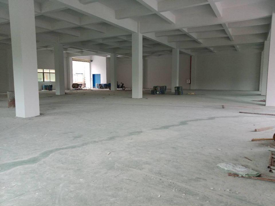 标准厂房工业园区一层1300层高6米