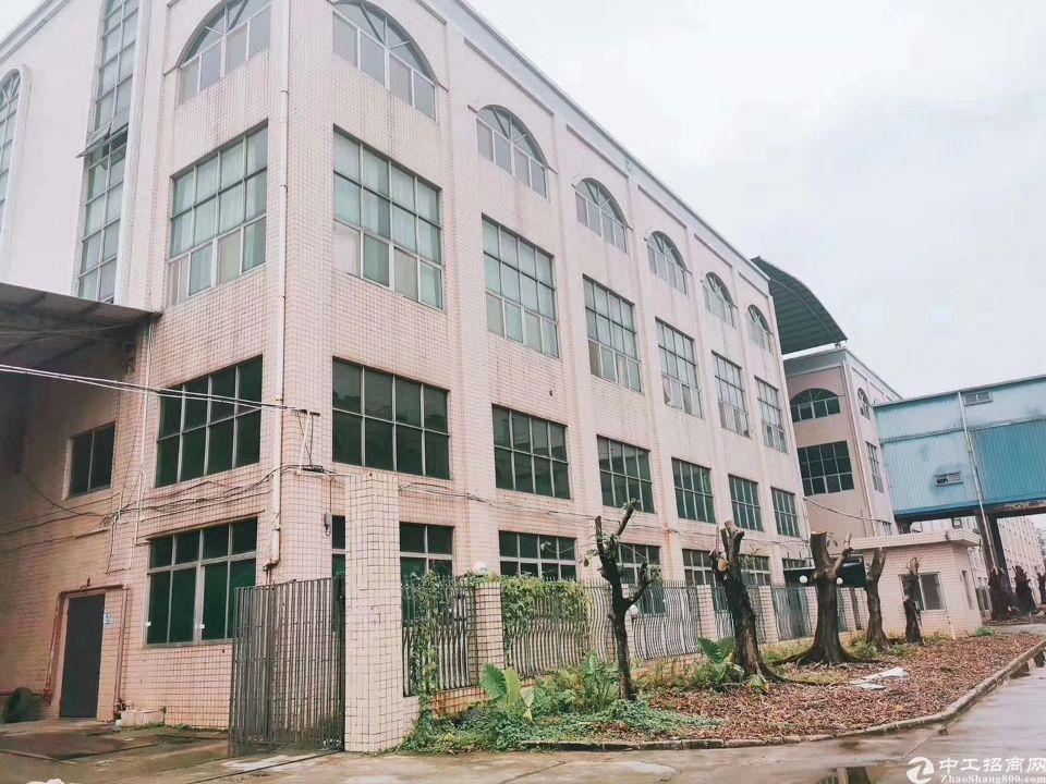 沥林新出原房东一楼600平米招租