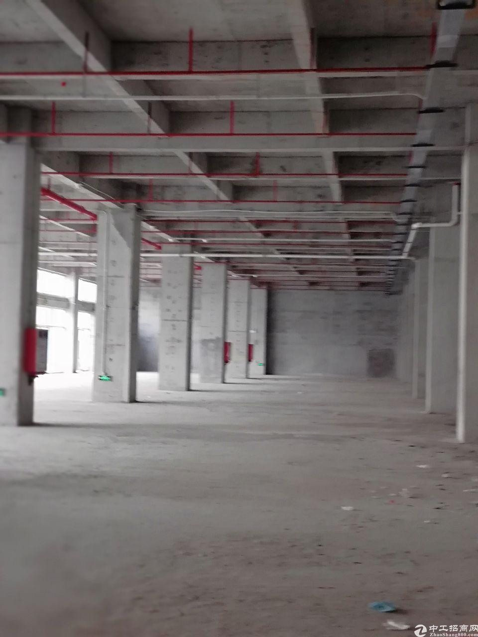 东莞常平镇全新国有双证厂房2000平诚意出售,还有48年