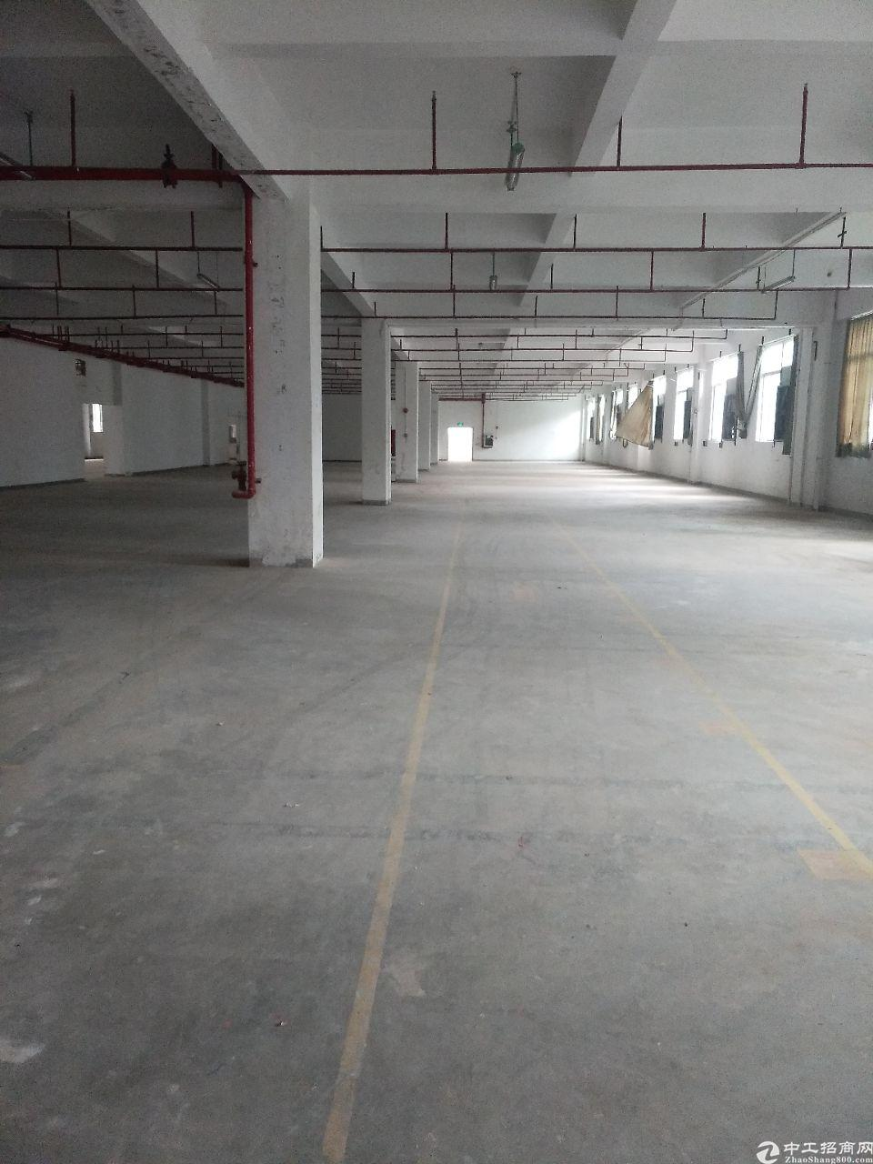 仲恺区惠环镇标准一楼1300平方厂房出租