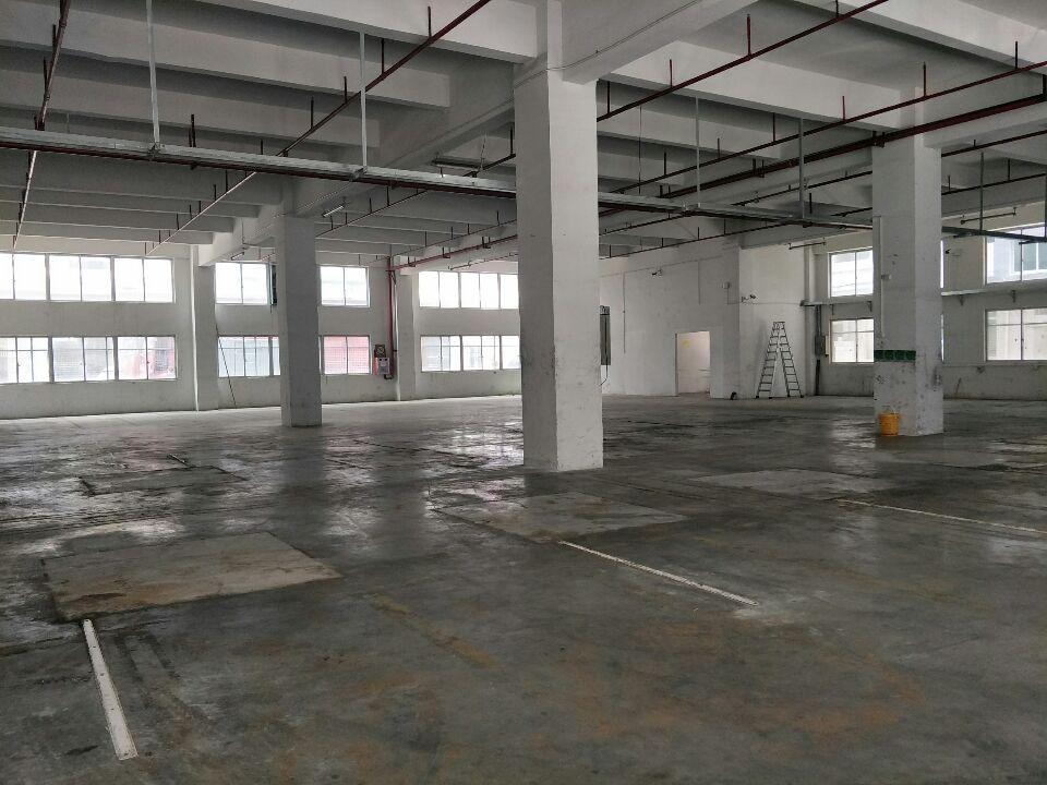 凤岗靠近东深二线新出重工业一楼2000平可分租