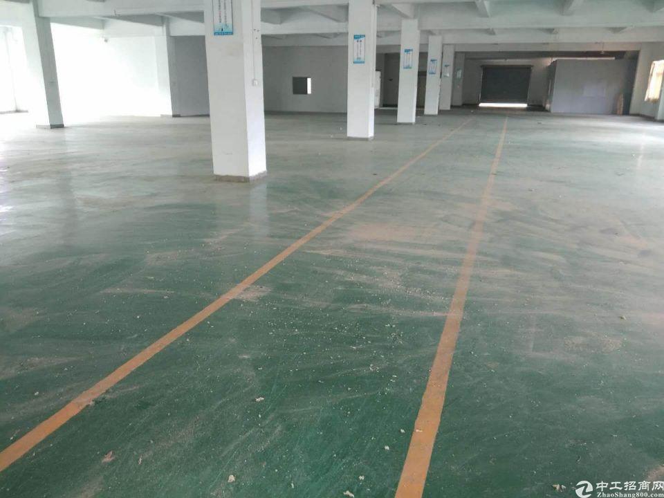 新圩镇村委标准厂房单层实积面积1500平方招租,可办环评
