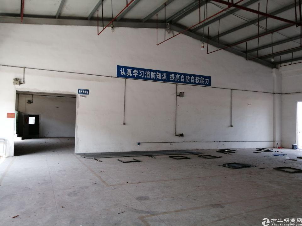 惠阳区钢构厂房3600平方出租