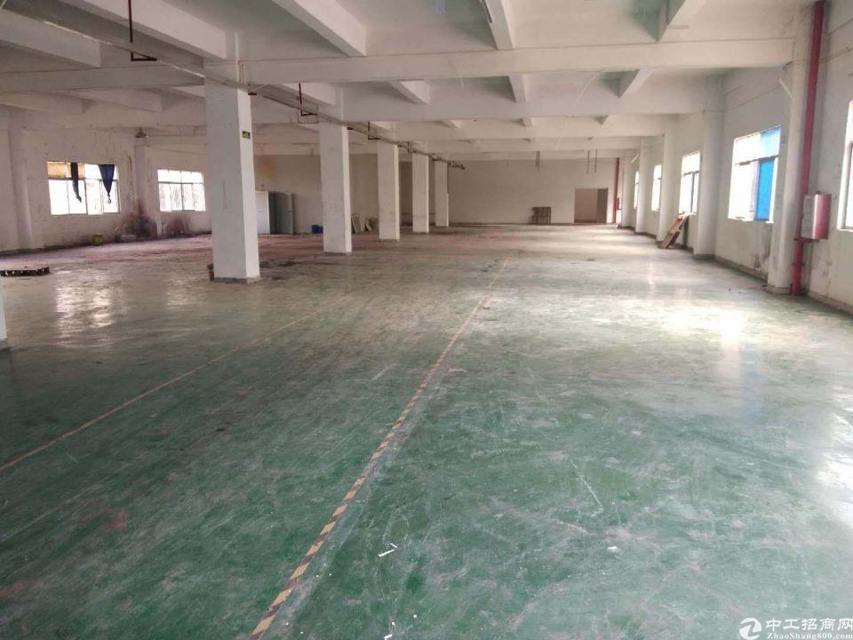 新圩镇原房东超大空地标准厂房10050平方招租