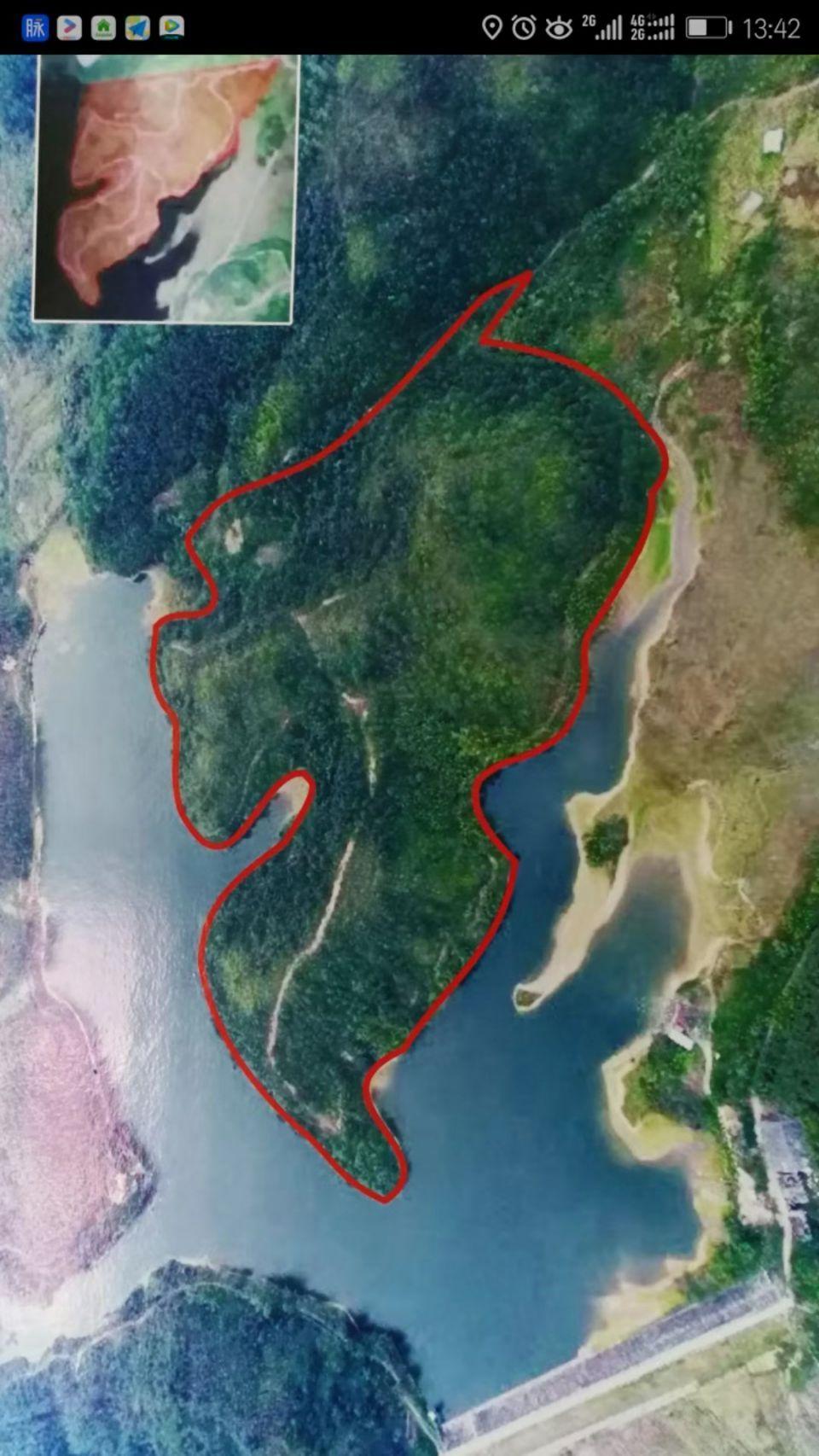 博罗杨村250亩山林地出租
