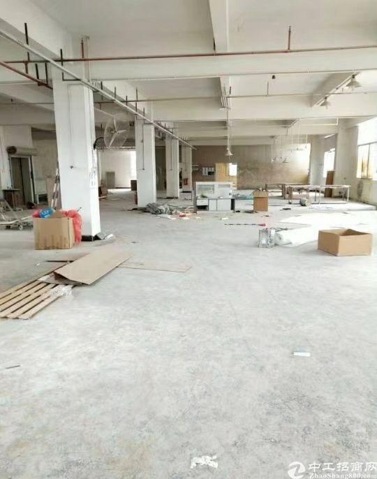 惠州惠东新出超靓标准厂房13000平米出租