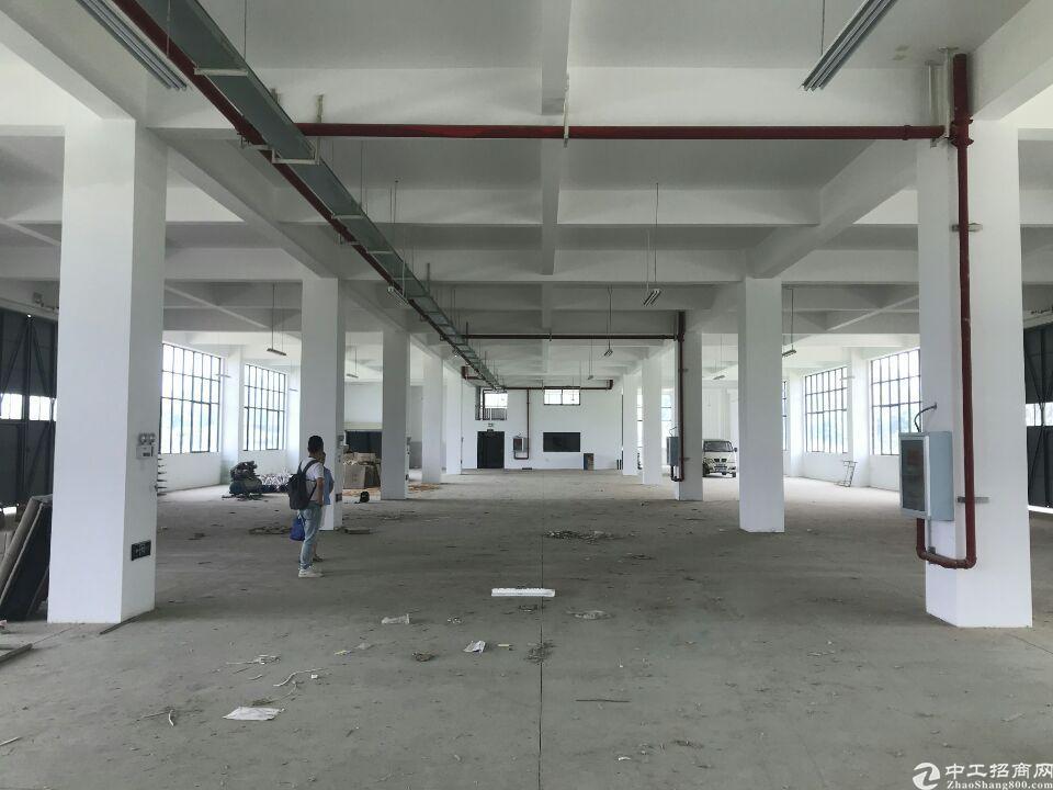 阳逻仓库7000平米,独栋,配套宿舍办公食堂,可分租