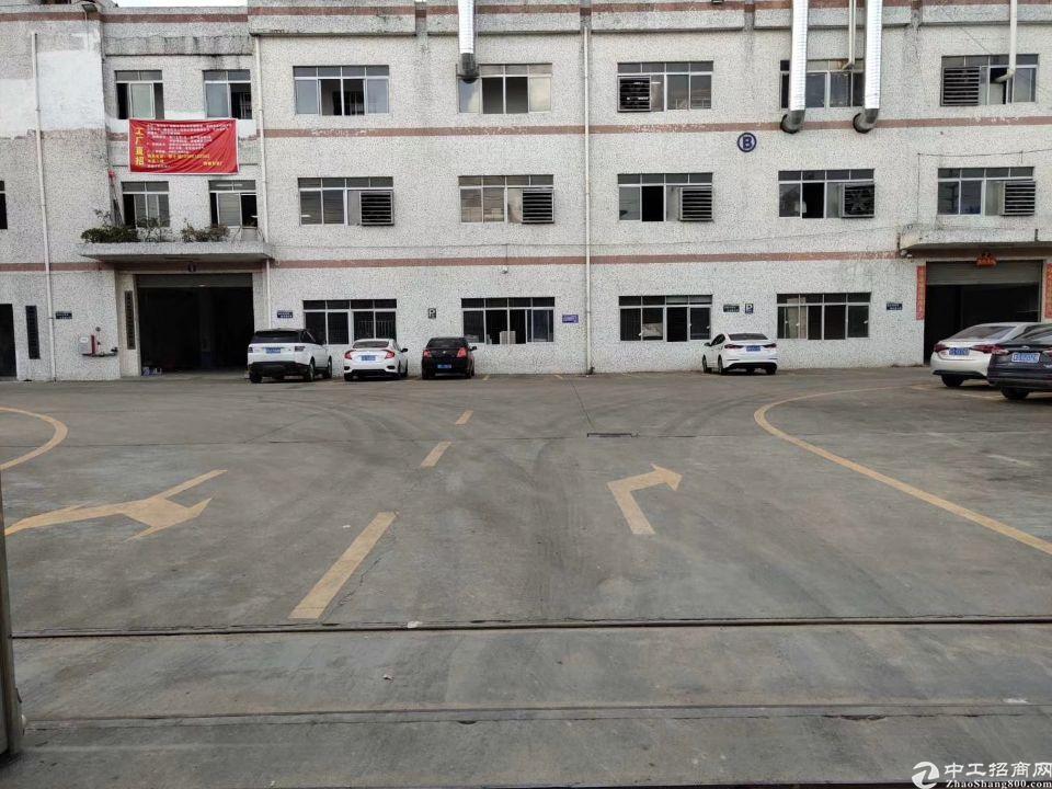 清溪标准厂房空出一楼1300平方招租,空地大交通方便,好招工