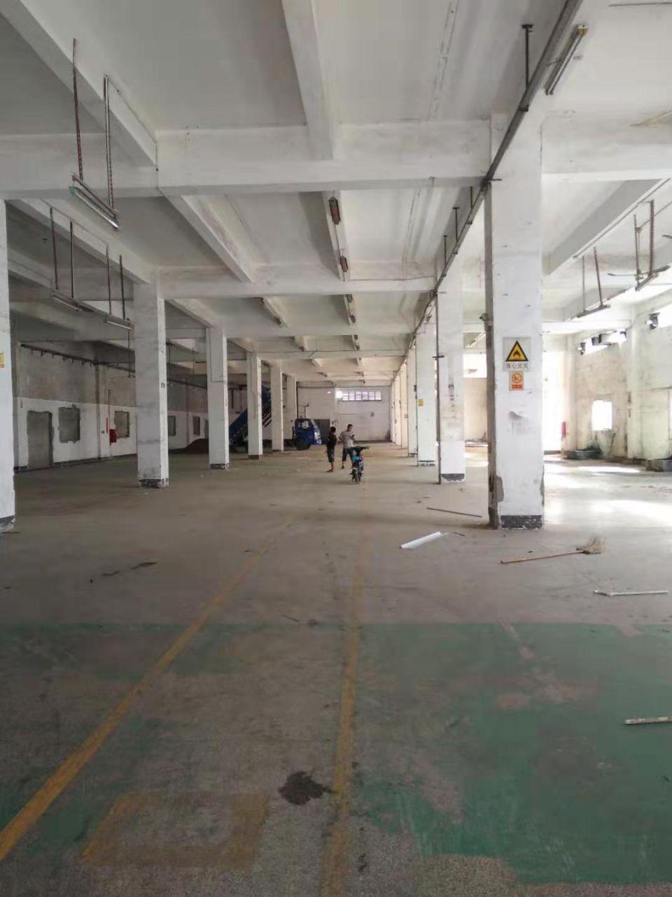 横岗大康原房东一楼层高6米2300平方米招租